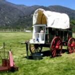 Riley's Museum-Gold Rush Adventure Field Trip